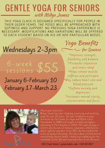 Gentle Yoga for Seniors Jan to March